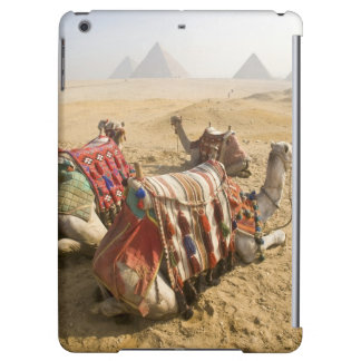 Egypt, Cairo. Resting camels gaze across the iPad Air Case