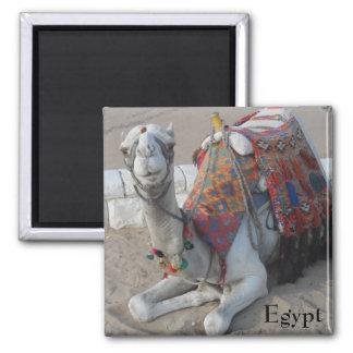 Egypt Camel 2 Inch Square Magnet
