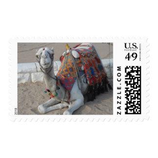 Egypt Camel Postage