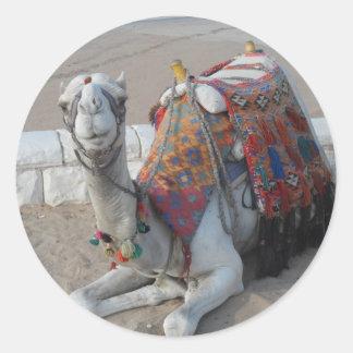Egypt Camel Classic Round Sticker