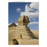 Egypt, Giza. The great Sphynx rises above the Card