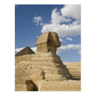 Egypt, Giza. The great Sphynx rises above the Postcard