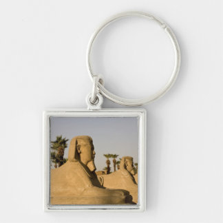 Egypt, Luxor. The Avenue of Sphinxes leads to Silver-Colored Square Keychain