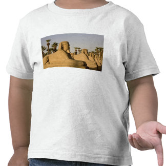 Egypt, Luxor. The Avenue of Sphinxes leads to T Shirt