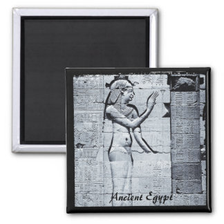Egypt, Philae Temple, Hieroglyphs  (Fridge Magnet) Magnet