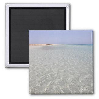 Egypt, Red Sea, Marsa Alam, Sharm El Luli, Beach 2 Refrigerator Magnets