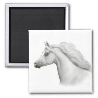 Egyptian Arabian Horse Square Magnet