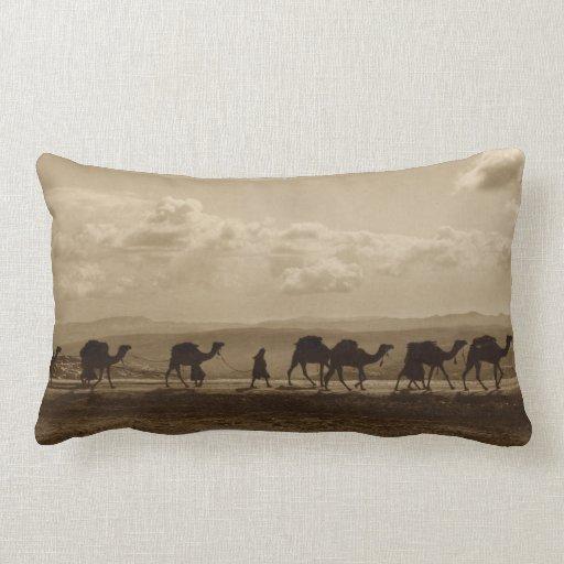 Egyptian camel transport passing over Olivet, 1918 Pillow