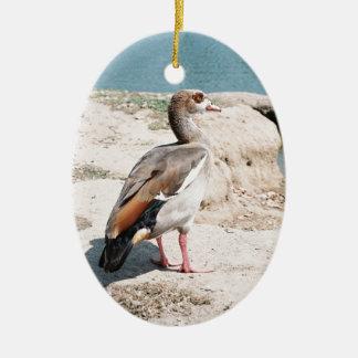 Egyptian Goose Ceramic Ornament