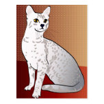 Egyptian Mau Cat - bronze background Postcard