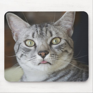 Egyptian Mau Cat Mouse Pad