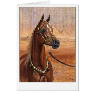 Egyptian Princess Arabian horse greeting card