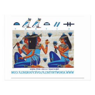Egyptian tomb of Nakht Postcard