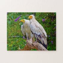 Egyptian Vulture  - Bird of Prey. Jigsaw Puzzle