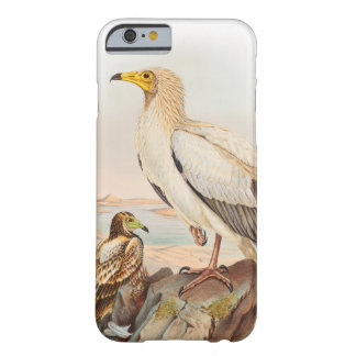 Egyptian Vulture John Gould Birds of Great Britain Barely There iPhone 6 Case