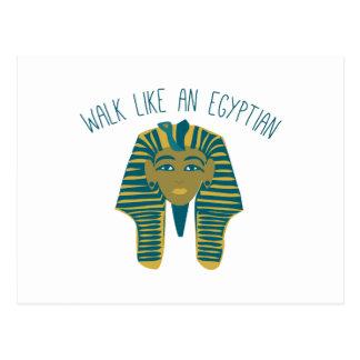 Egyptian Walk Post Card