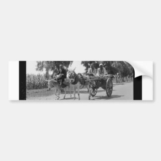 Egyptians with Carts and Donkeys circa 1934 Bumper Sticker