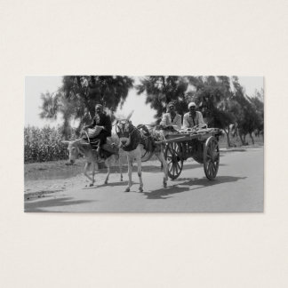 Egyptians with Carts and Donkeys circa 1934 Business Card