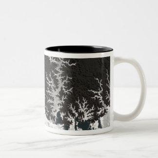 Egypt's Lake Nasser Two-Tone Coffee Mug