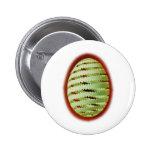 Ei_Spirale egg Pinback Button