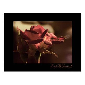 Eid Mubarak - postal del rosa rojo