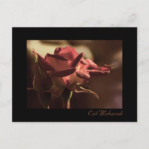 http://rlv.zcache.com/eid_mubarak_red_rose_postcard-p2395591003614131667onr_500.jpg