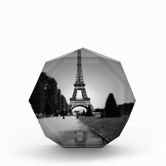 Eiffel Tower 3 Acrylic Award