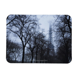 Eiffel tower and trees, Paris, France Magnet