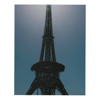 Eiffel tower, Dubai Miracle Garden Panel Wall Art