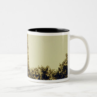 Eiffel Tower, Paris, France 4 Two-Tone Coffee Mug