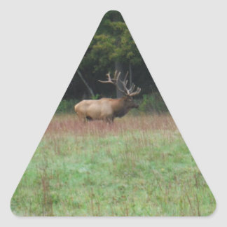 Eight 8 Point Bull Elk in Autumn Triangle Sticker