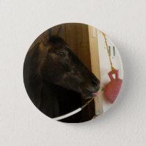 Eight Belles Pinback Button