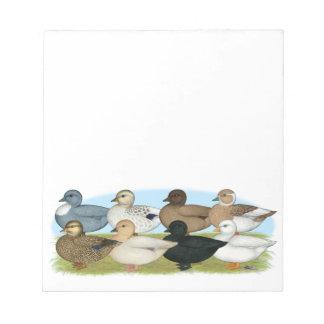 Eight Call Ducks Memo Notepads