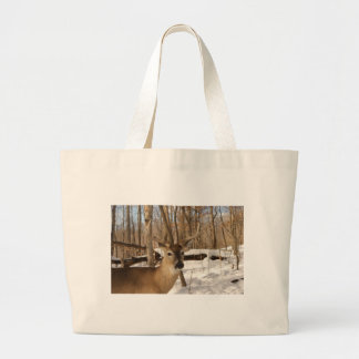 Eight point buck in winter snow. bag