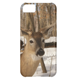 Eight point buck in winter snow. cover for iPhone 5C