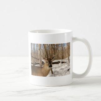 Eight point buck in winter snow. coffee mug
