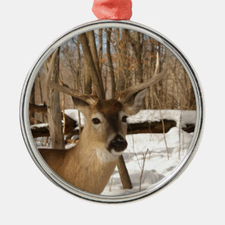 Eight point buck in winter snow. christmas tree ornament