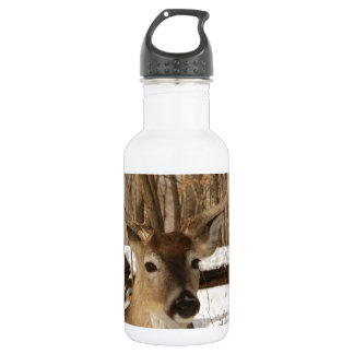 Eight point buck in winter snow. water bottle
