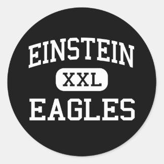 Einstein - Eagles - joven - Appleton Wisconsin Pegatina Redonda