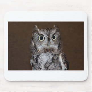 Einstein- Eastern Screech Owl I Mouse Pad