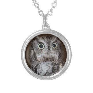 Einstein- Eastern Screech Owl I Round Pendant Necklace