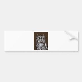 Einstein- Eastern Screech Owl II Bumper Sticker