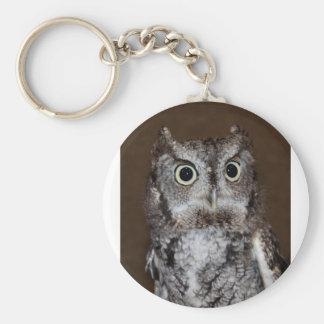 Einstein- Eastern Screech Owl II Keychain