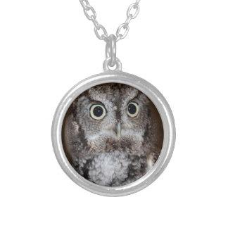 Einstein- Eastern Screech Owl II Round Pendant Necklace