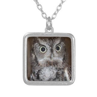 Einstein- Eastern Screech Owl II Square Pendant Necklace