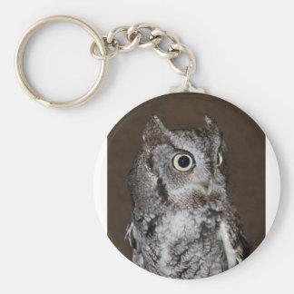 Einstein- Eastern Screech Owl III Keychain
