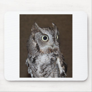 Einstein- Eastern Screech Owl III Mouse Pad