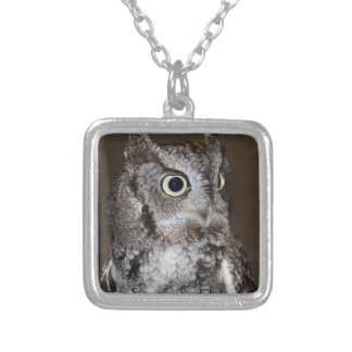 Einstein- Eastern Screech Owl III Square Pendant Necklace