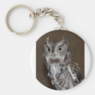 Einstein- Eastern Screech Owl IV Keychain