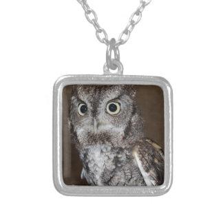 Einstein- Eastern Screech Owl IV Square Pendant Necklace